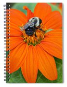 A Taste Of Honey Spiral Notebook