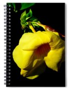 All Yellow Spiral Notebook