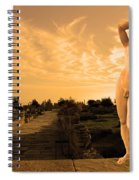 Apollo Sacred Street Spiral Notebook