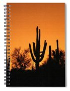 Arizona Sagurao Sunset Spiral Notebook