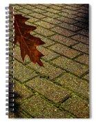Autumnal Equinox Spiral Notebook