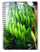 Banana Plants Spiral Notebook