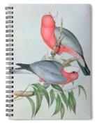 Birds Of Asia Spiral Notebook
