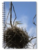 Blue Heron Rookery 7212 Spiral Notebook
