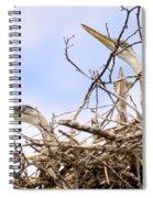 Blue Heron Rookery 7214 Spiral Notebook