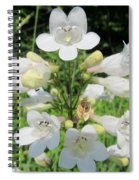 Breadtonge Spiral Notebook