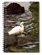 Breeding Plumage Spiral Notebook