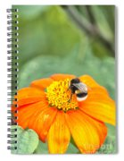 Bumble Bee 01 Spiral Notebook