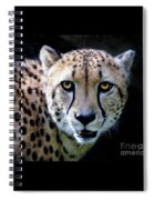 Cheetah Spiral Notebook