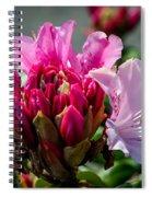 Coast Rhododendron Spiral Notebook