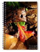 Colored Leaves Spiral Notebook