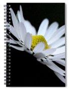 Daisy 4 Spiral Notebook