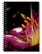 Day Lillies Spiral Notebook