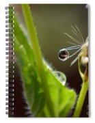 Dew Drop Spiral Notebook