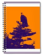 Eagle Scout At Sunset Spiral Notebook