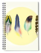 Feathers 2 Spiral Notebook