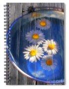 Five Daisies Spiral Notebook