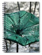 Glass Lily Pad  Spiral Notebook