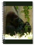 Gorilla Snacking Spiral Notebook