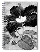 Hibiscus Art Spiral Notebook
