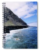 Hierro Spiral Notebook