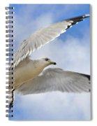 Jekyll Island Seagull Spiral Notebook