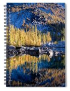 Larch Tree Reflection In Leprechaun Lake Spiral Notebook