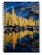 Leprechaun Lake Larches Spiral Notebook