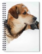 Look More Snow Spiral Notebook