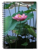 Lotus Flower At Calloway Spiral Notebook