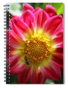 Melanie's Summerdream Spiral Notebook