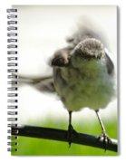 Mockingbird Dance Spiral Notebook