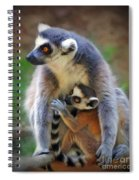 Mother And Baby Monkey Spiral Notebook
