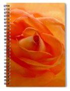 Orange Swirls Rose Flower Spiral Notebook
