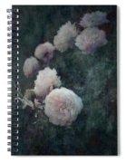 Perennial Gardens - Fall #04 Spiral Notebook