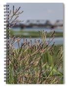 Purpletop Vervain Wildflowers Spiral Notebook