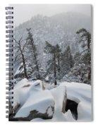 San Jacinto Winter Wilderness Portrait Spiral Notebook