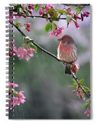 Singing In The Rain  2   Spiral Notebook