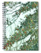 Spring Drops Spiral Notebook