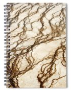 Spring Runoff Spiral Notebook