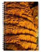 Temple Of The Sun Detail Spiral Notebook