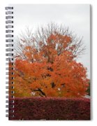 Thanksgiving Greetings Spiral Notebook