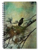 The Old Pine Tree Spiral Notebook