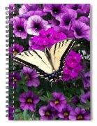 Tiger  Swallowtail Butterfly Spiral Notebook