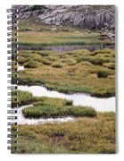 Titcomb Basin Marsh Spiral Notebook