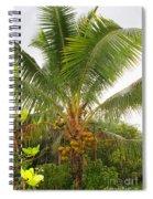 Westmoreland Jamaica 4 Spiral Notebook