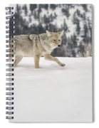 Winter's Determination Spiral Notebook