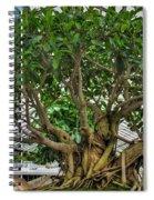 001 Bonsai Summer Show Buffalo Botanical Gardens Series Spiral Notebook
