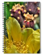 001 For The Cactus Lover In You Buffalo Botanical Gardens Series Spiral Notebook