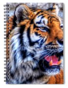 001 Siberian Tiger  Spiral Notebook
